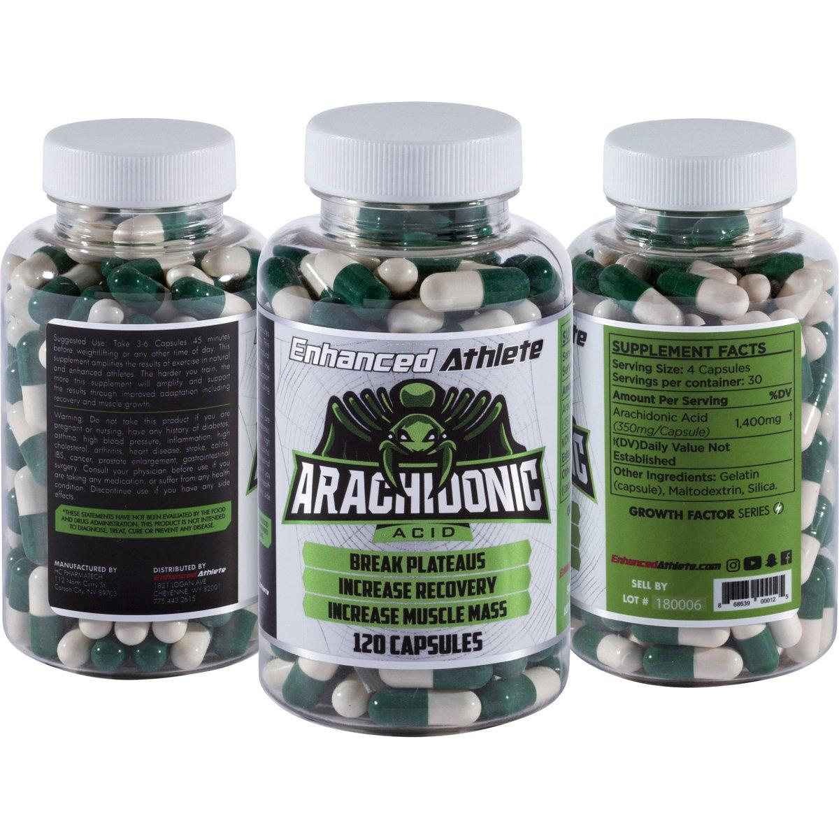 근육 성장의 끝판왕- Arachidonic Acid